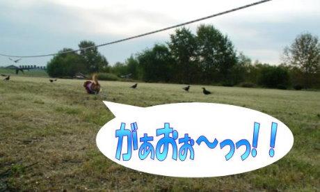 20070928-3.jpg