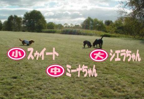 20070930-1.jpg