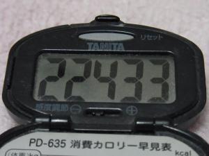 110423-060万歩計(縮小)