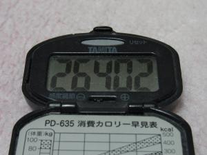 110429-050万歩計(縮小)