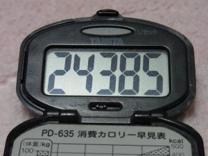 110503-050万歩計(縮小)
