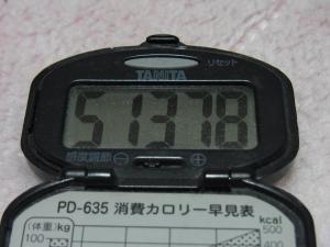 110504-050万歩計(縮小)