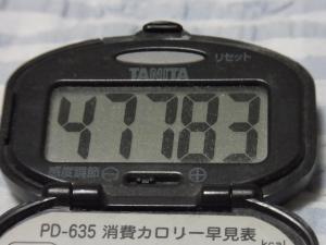 110508-050万歩計(縮小)