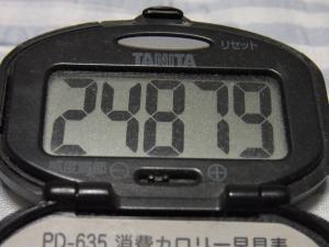 110514-050万歩計(縮小)