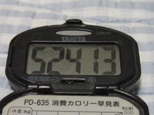 110515-060万歩計(縮小)