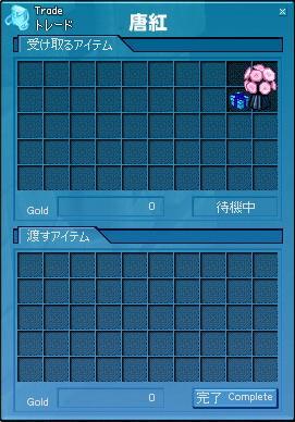 mabinogi_2007_05_03_001.jpg