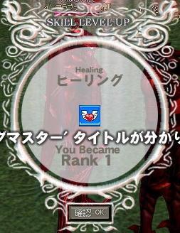 mabinogi_2007_11_30_002.jpg