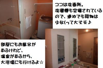 P1060907_20110505201717.jpg