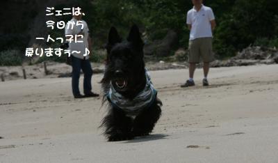 a_20110516194104.jpg