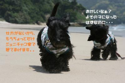 a_20110516194605.jpg