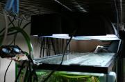 60cm水槽照明