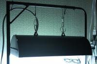 ラスボラ水槽照明