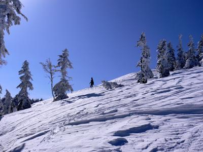 20070126_04.jpg
