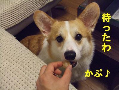 20071011230540.jpg