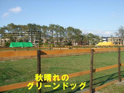 20071104190128.jpg