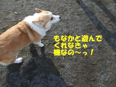 20071118215939.jpg