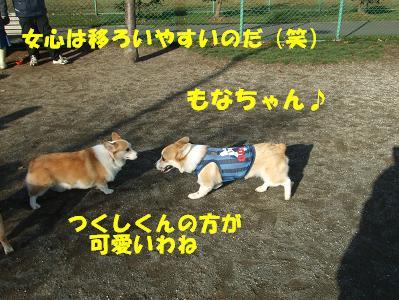 20071119225337.jpg