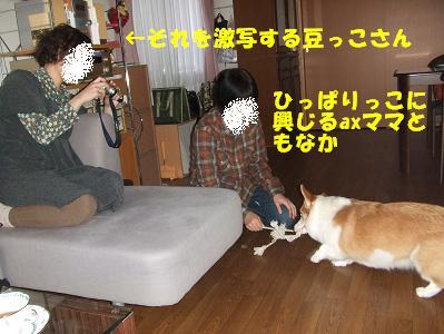 20071125013710.jpg