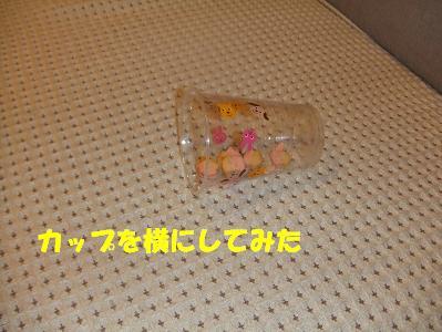 20071202221556.jpg