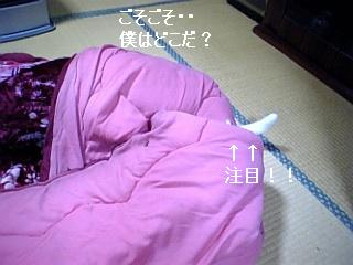070323_222729_ed.jpg
