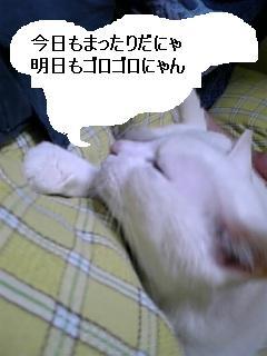 070518_214231.jpg