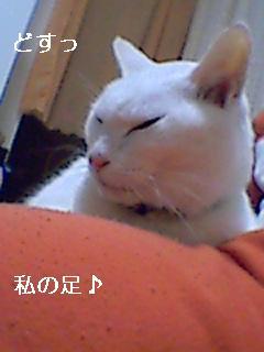 071112_220150.jpg