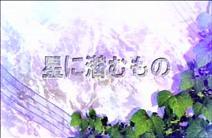 terahe13title.jpg
