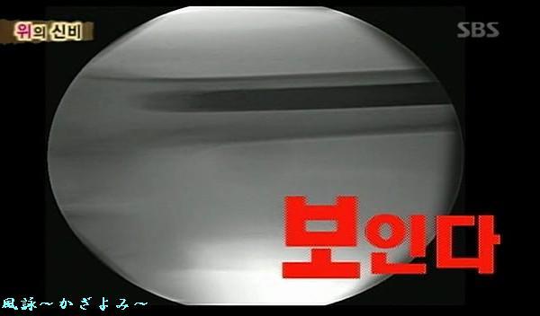 20071121224707.jpg