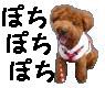 20071115140248.jpg