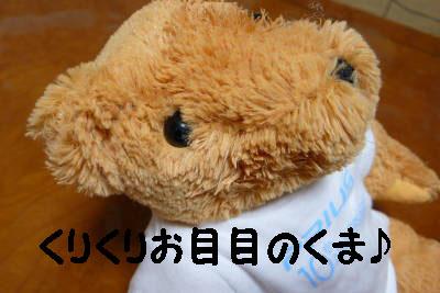 20071116094650.jpg