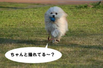 07/03/29②