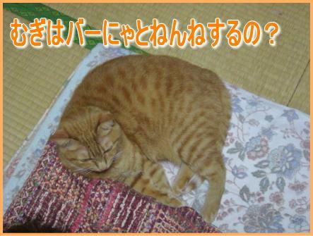 20071016113215.jpg