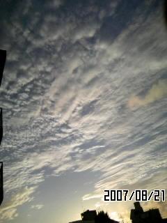 PA0_0106.jpg