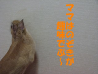 7/9...2