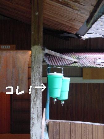 20060911120440.jpg