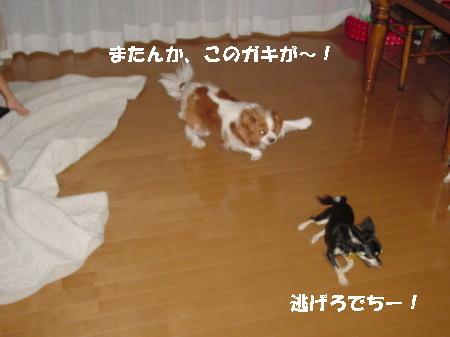 20060915012649.jpg