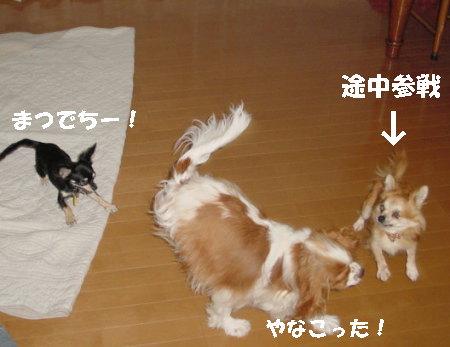 20060915012713.jpg