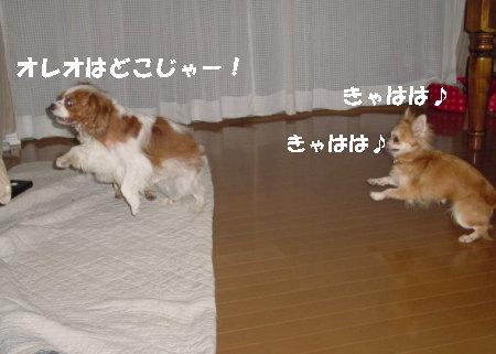 20060915012740.jpg