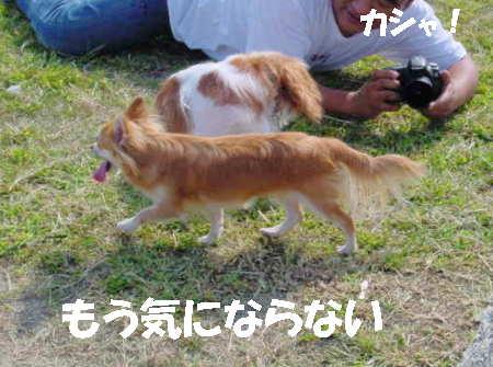 20060930215532.jpg