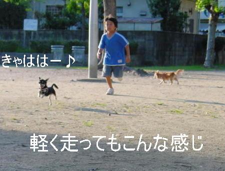 20061009214646.jpg