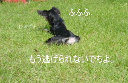 20061012183455.jpg