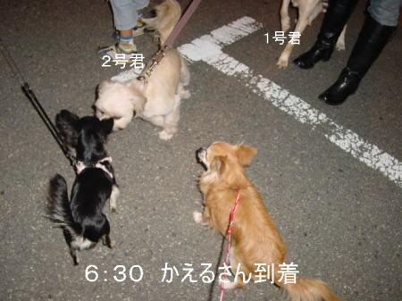 20061014190627.jpg