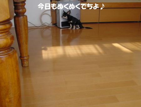 20061213013739.jpg