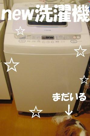 20061219105718.jpg
