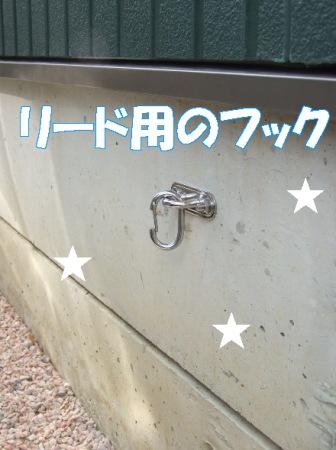 20070125215122.jpg