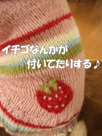 20070130133601.jpg