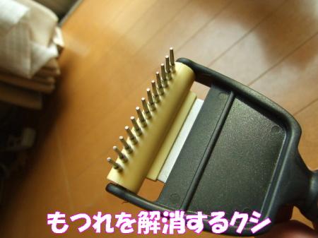 20070327130156.jpg