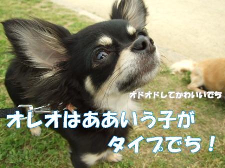 20070509003459.jpg