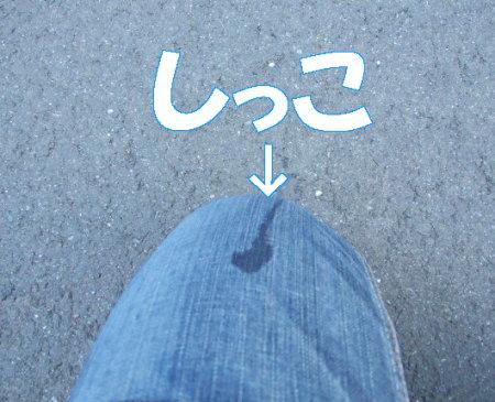 20070620144710.jpg