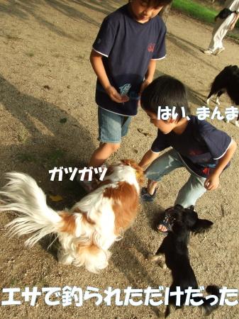 20070703113806.jpg